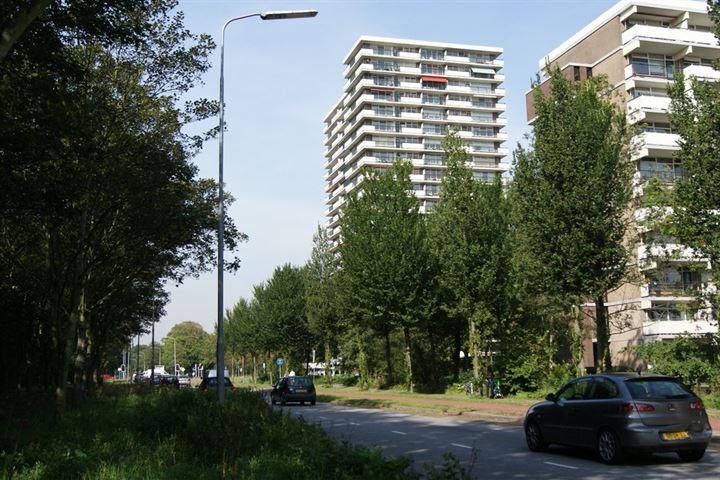 van Vredenburchweg 887