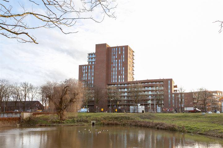 Willemspoort 77