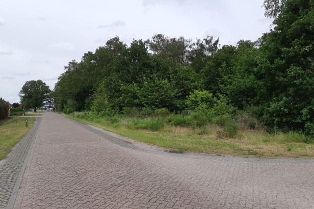 Bekijk foto 2 van Schansweg