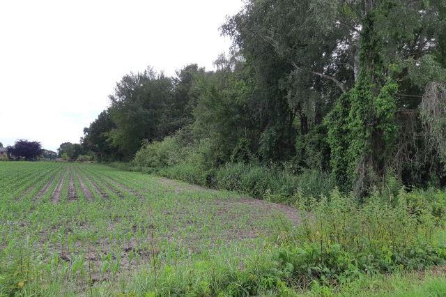 Bekijk foto 5 van Schansweg