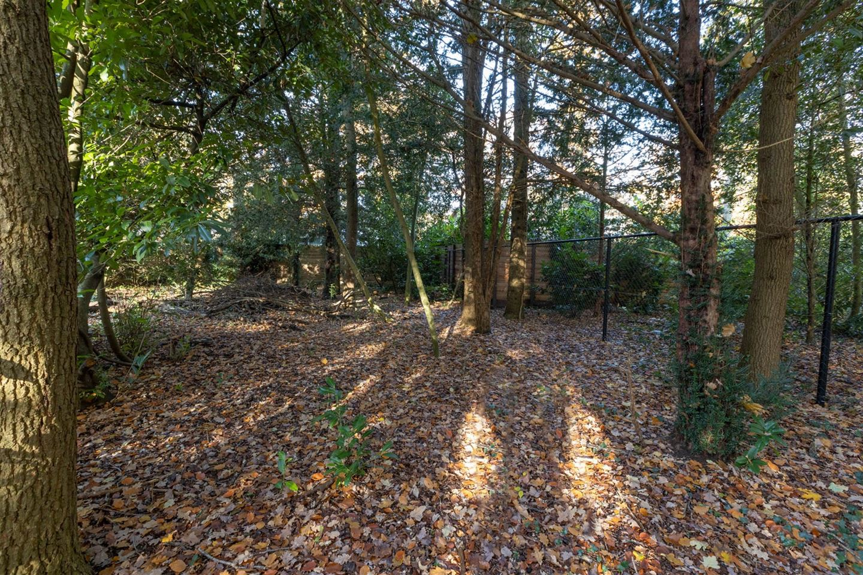 View photo 6 of Boslaan 4