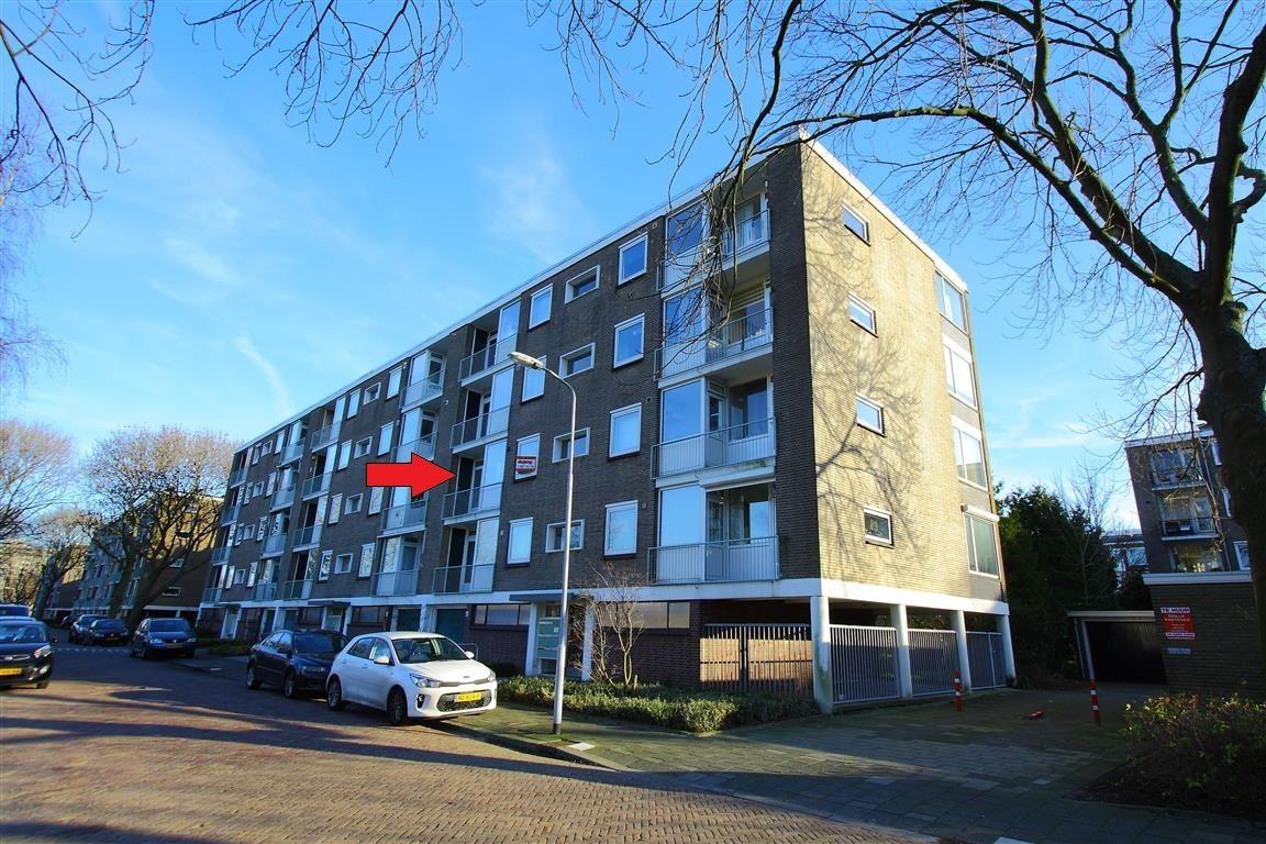 View photo 1 of van Leeuwenstraat 46