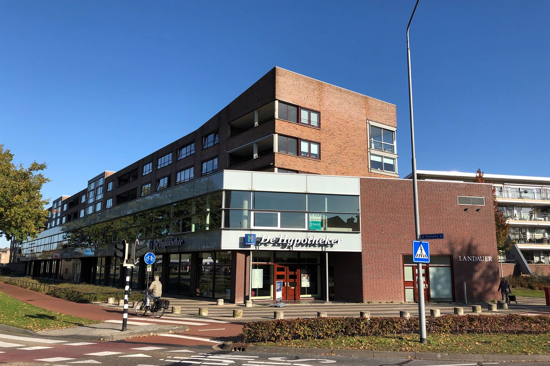 Bekijk foto 1 van De Reijenburg 39