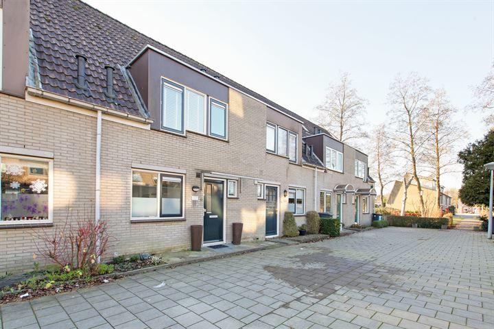Cornelis Aarnoutsstraat 137