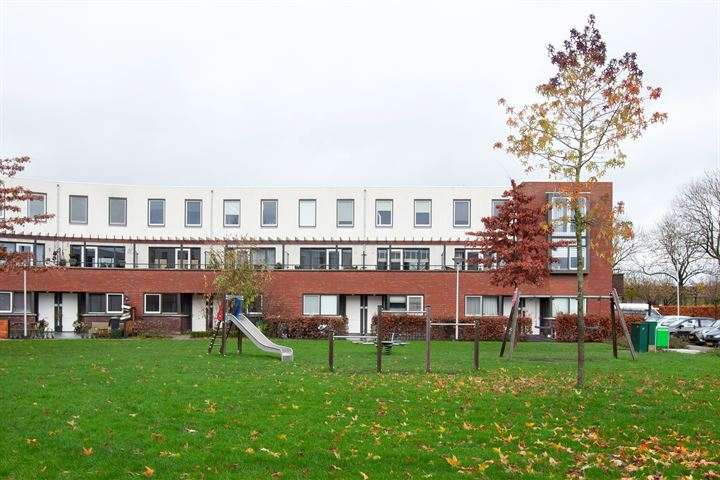 Grijpestijnhof 17