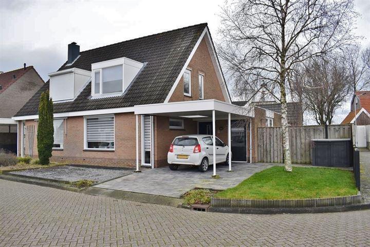 Leeuwenburg 8