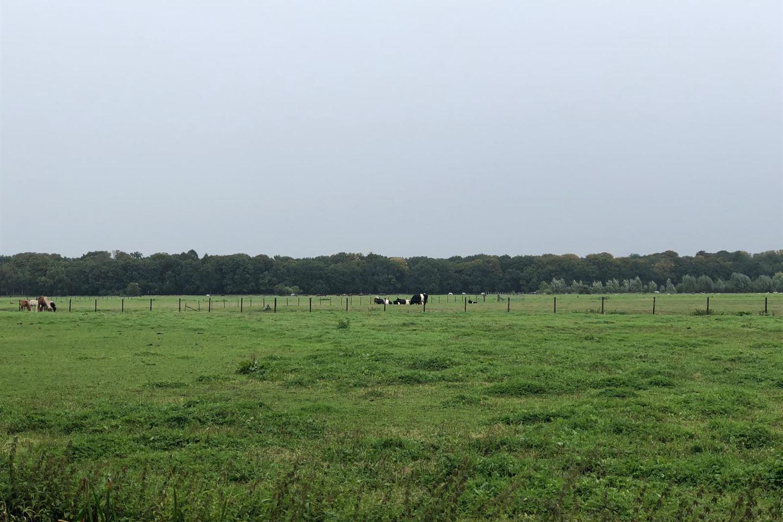 View photo 5 of Nieuw-Loosdrechtsedijk 146 H5