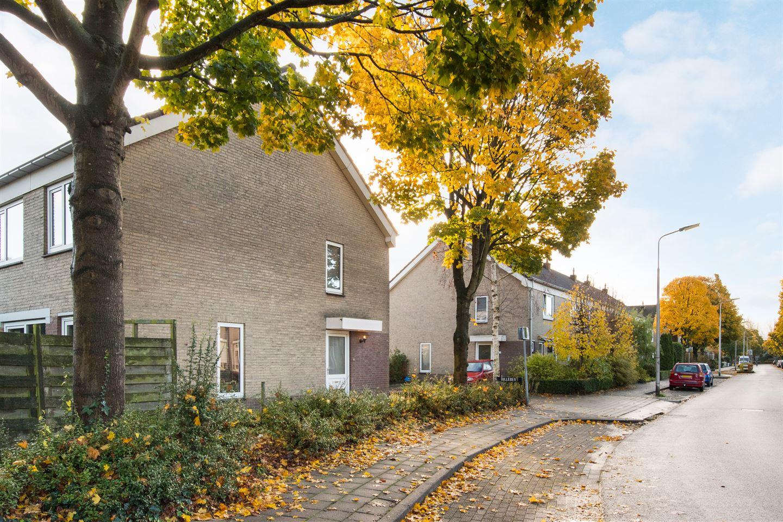 Bekijk foto 1 van Damastberg 100