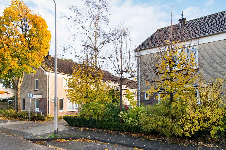Bekijk foto 2 van Damastberg 100
