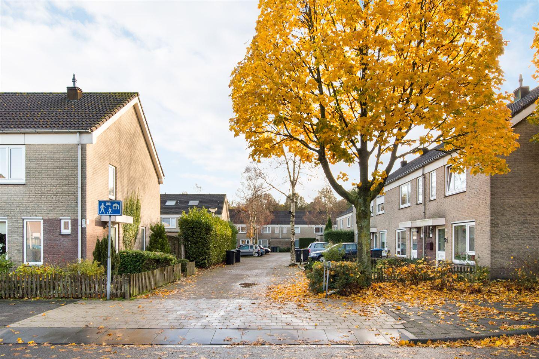 Bekijk foto 5 van Damastberg 100