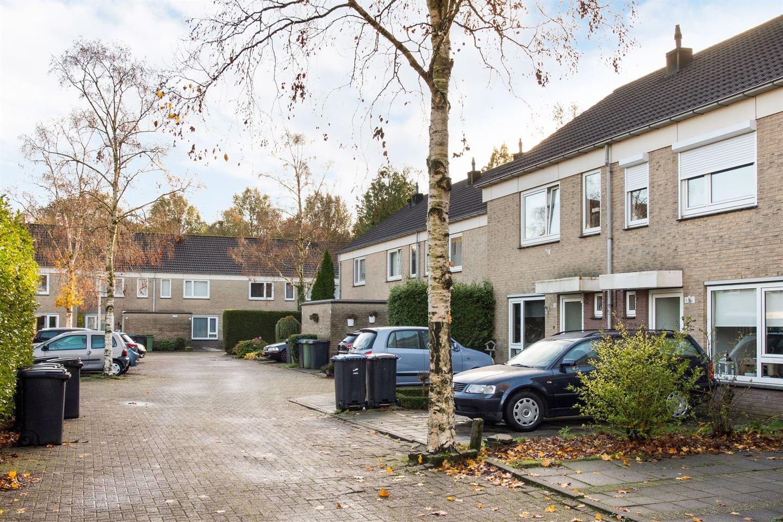 Bekijk foto 6 van Damastberg 100