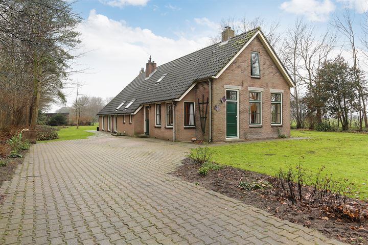 Schapenstreek 8