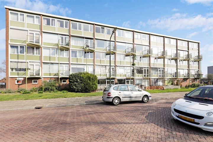 Ruys de Beerenbrouckstraat 135