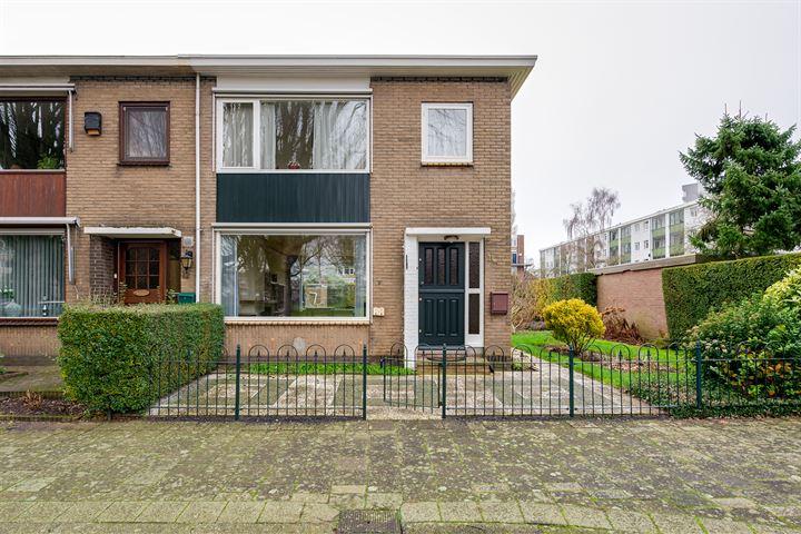 Van Limburg Stirumplantsoen 11