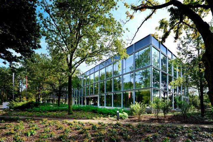De Lismortel 31, Eindhoven