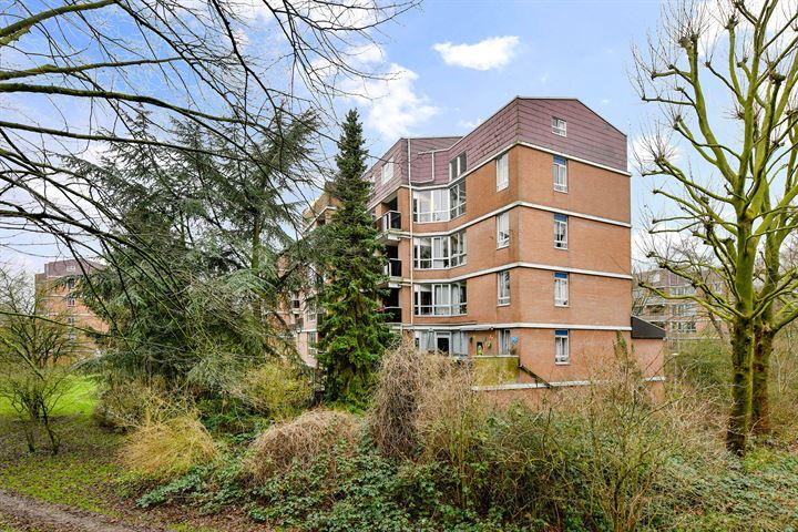 Leusdenhof 376