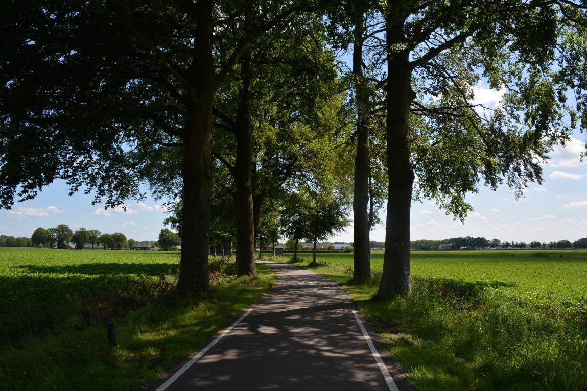 View photo 2 of Malbergerweg 2 A