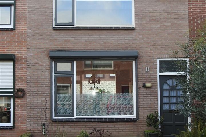 Crocusstraat 19