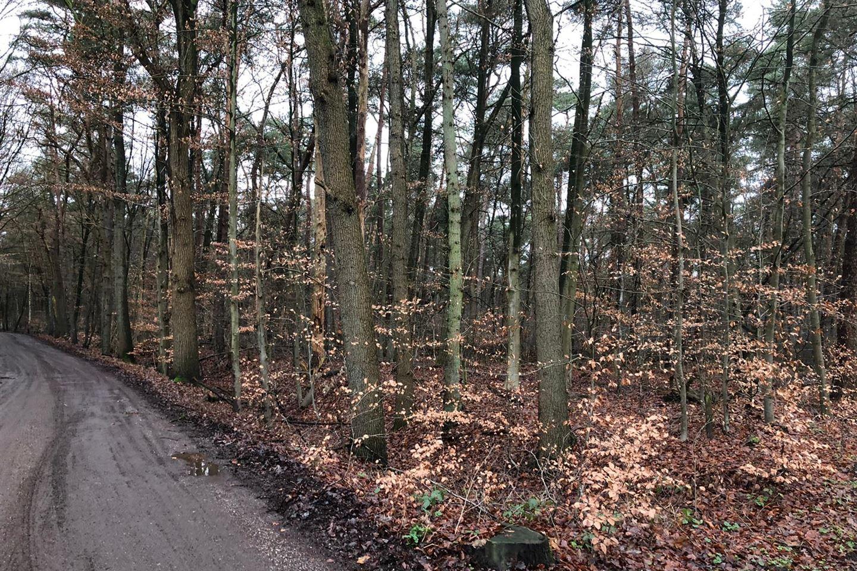 Bekijk foto 1 van Harderwijkerweg