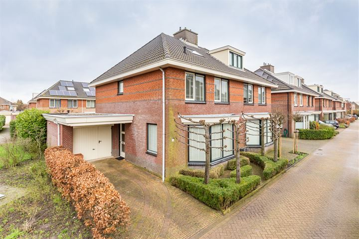 Jan van Geemstraat 26