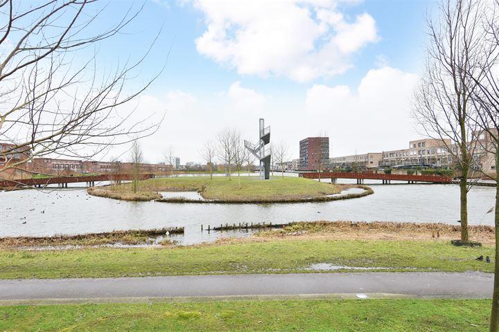 Westerschelde 286