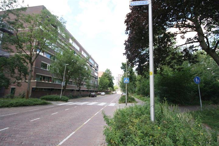 Raaphorst 25