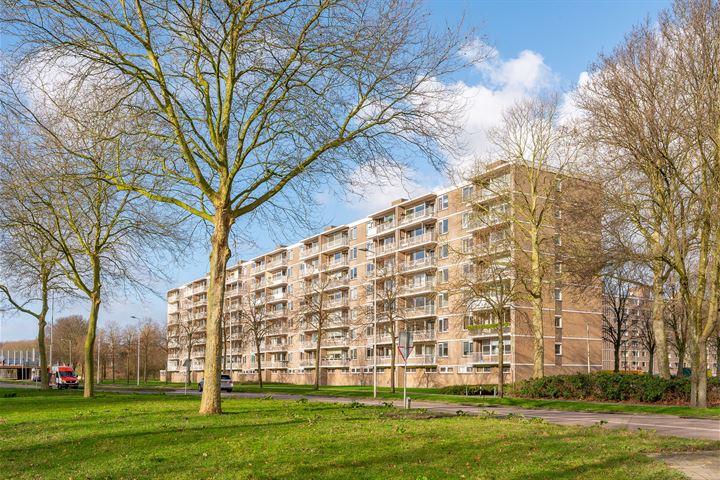 Edmond Hellenraadstraat 88