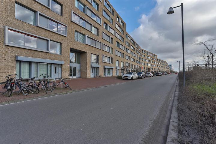 Verlengde Lodewijkstraat 42