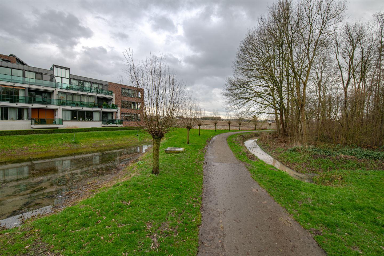 Bekijk foto 3 van Burgemeester Hommesstraat 42