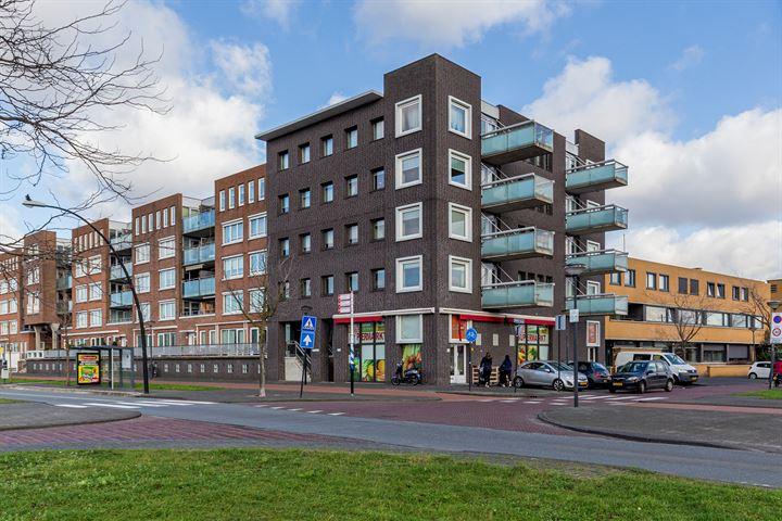 Laan van Wateringse Veld 1406