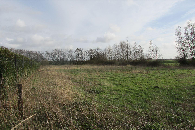 Bekijk foto 2 van Spieringweg 1018 A.