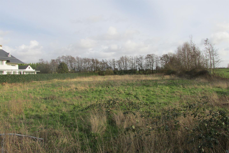 Bekijk foto 3 van Spieringweg 1018 A.