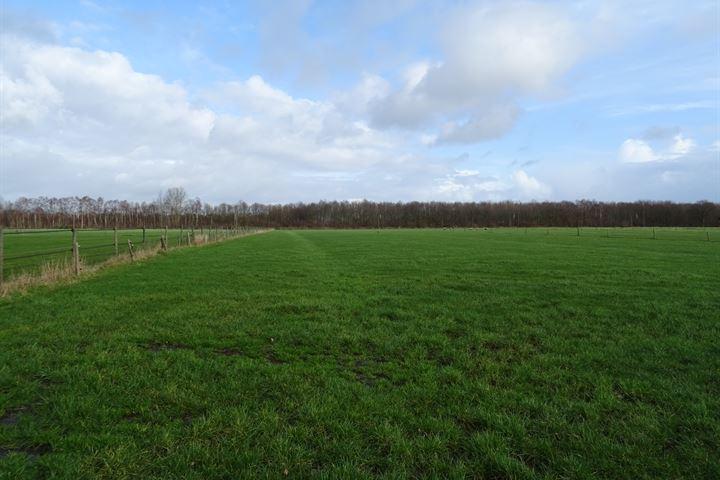 Steenwijkerweg, Willemsoord