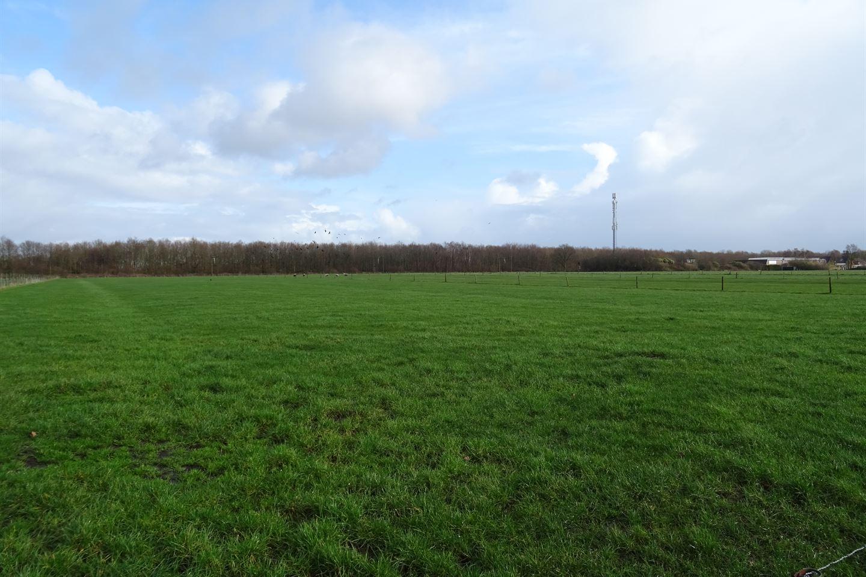 Bekijk foto 3 van Steenwijkerweg