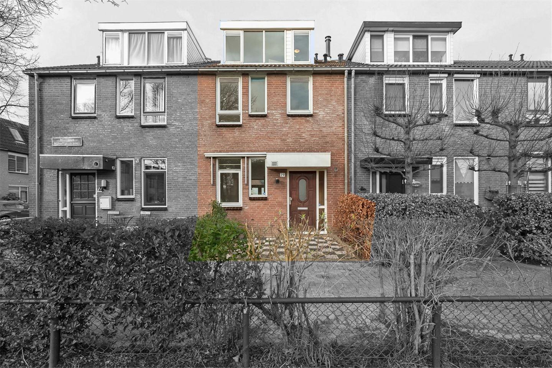 Bekijk foto 1 van Martinus Nijhoffplantsoen 29