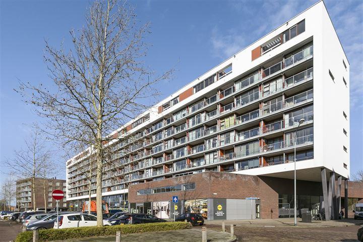 Johan van Reigersbergstraat 159