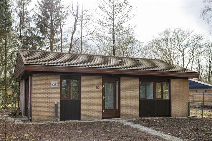 Molenbosch 50