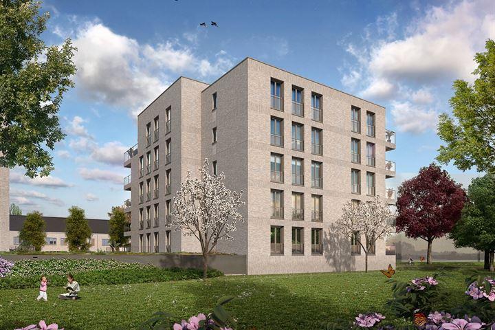 Nuenen - Park Luistruik - Fase 4.1 - bouwveld E