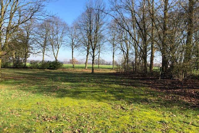 Bekijk foto 2 van Lieshoutseweg (bouwkavel 3)