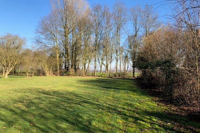 Bekijk foto 4 van Lieshoutseweg (bouwkavel 3)