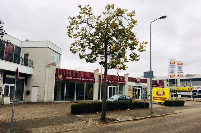 Bekijk foto 4 van Willem van Konijnenburglaan 1 -1b