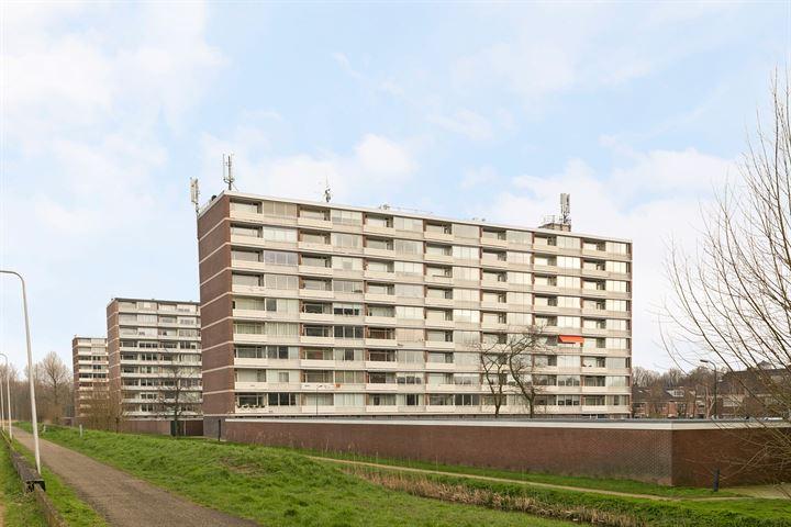 Wiardi Beckmanstraat 107