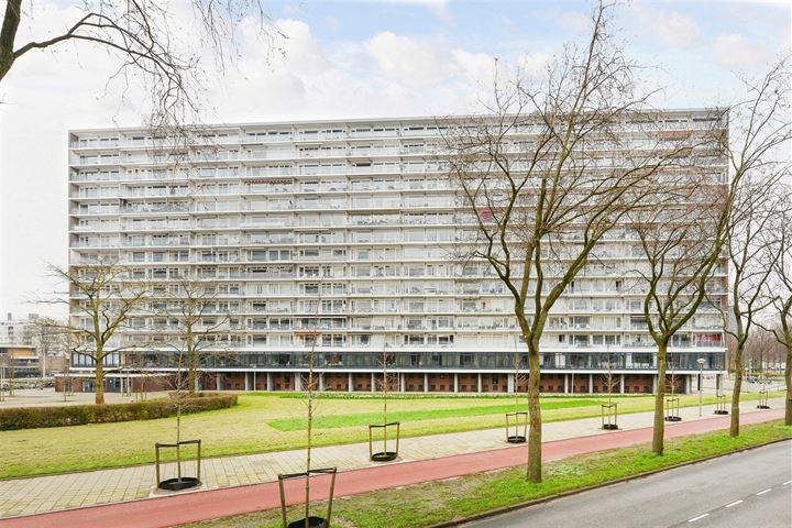 Burgemeester Hogguerstraat 225