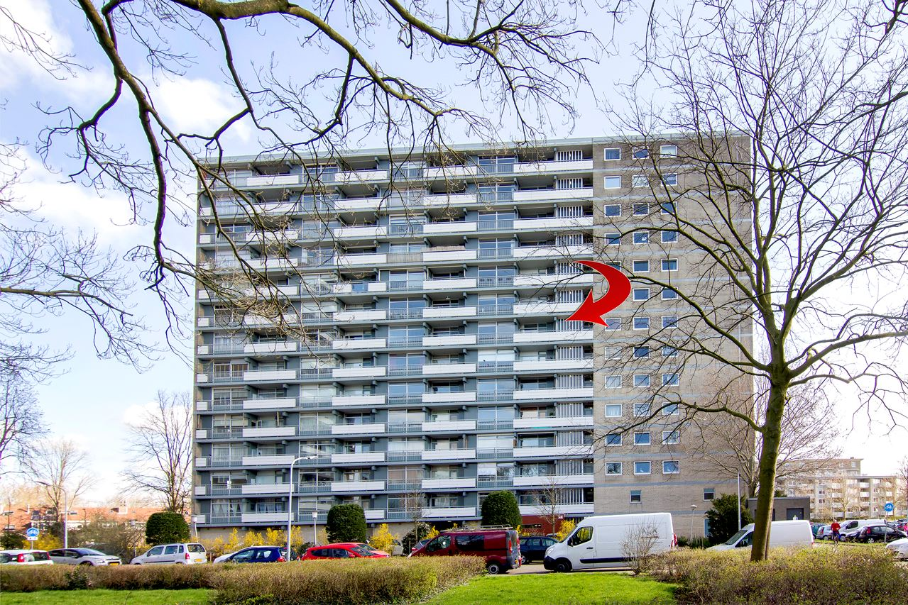 Bekijk foto 1 van Waddenstraat 655