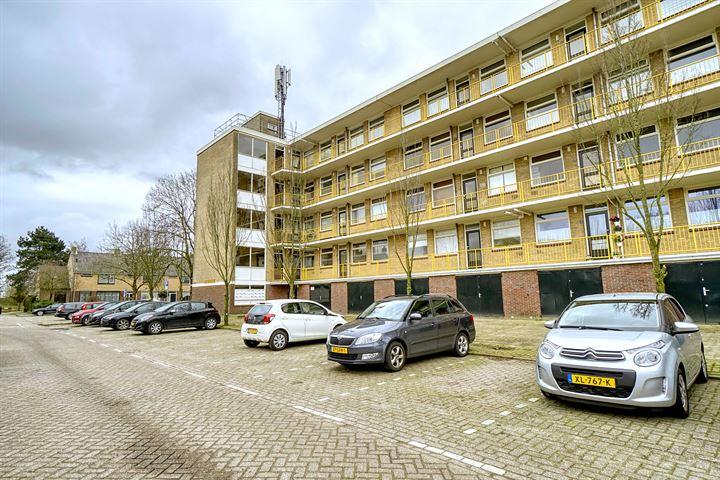 Jacob Reviusstraat 41