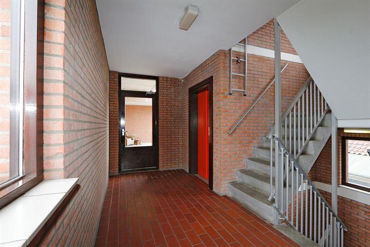 Marthinus Steynstraat 16