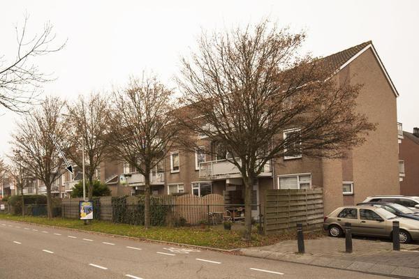 Veenburg 213 *