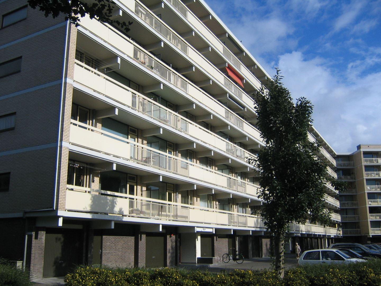 Hc Groningen