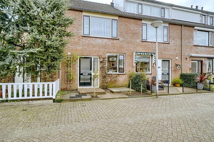 Steenbokstraat 23