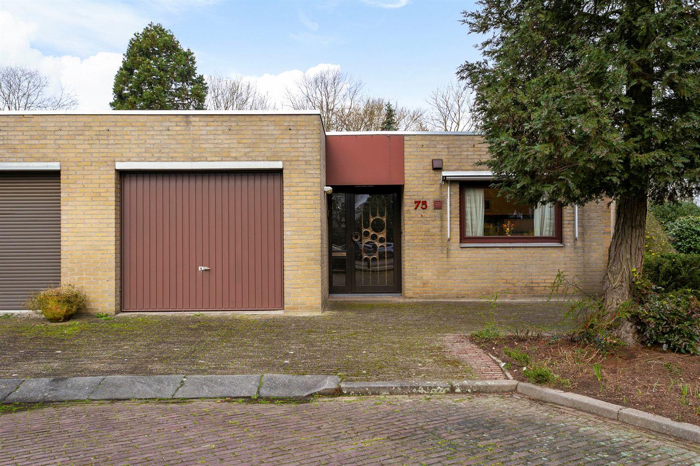 View photo 1 of De Wieken 75